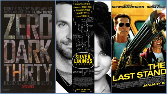 Zero Dark Thirty, Silver Plybk and Last Stand